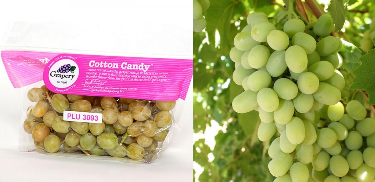 Cotton Candy®: Uva com sabor de algodão doce!!!