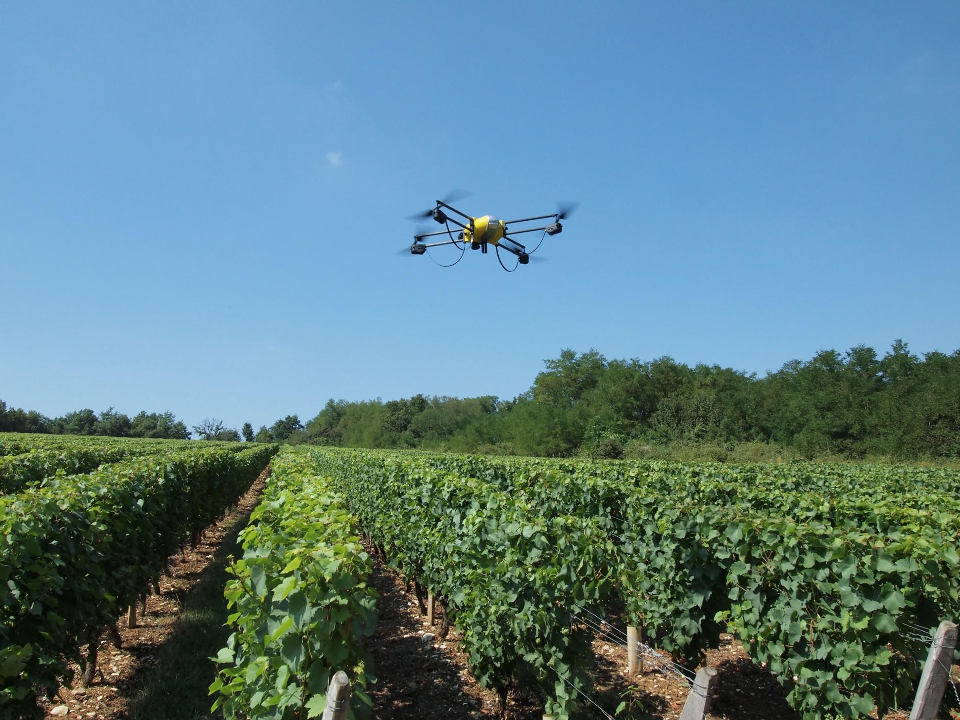 Drone voando sobre plantação - Drones na viticultura