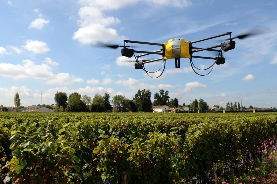 Drones na viticultura: a revolução do sistema produtivo